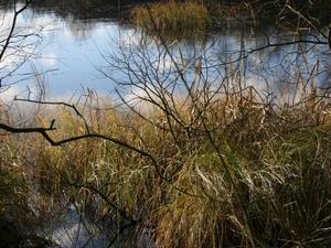 Río Skjern