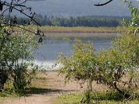 Smith e zonas húmidas Bybee Área Natural