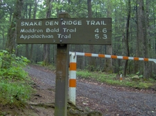 Snake Den Ridge Trailhead At Cosby Campground