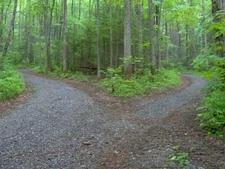 Cul-de-sac End Of The Gravel Road
