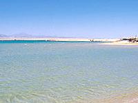 Leia Bay