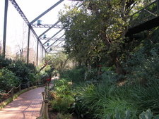 Inside The Aviary
