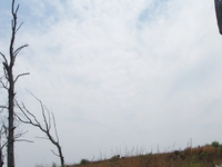 Rietvlei Reserva Natural