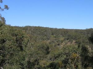 Spring Gully Conservación del Parque