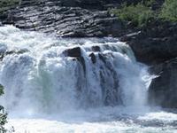 Stabbursdalen National Park