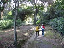 Hikers In Pigeon Valley