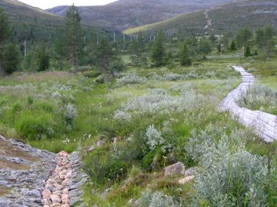 Start Of The Trekking Route In Pallas