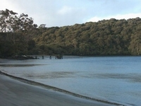 Rakiura National Park