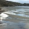 Mudflats Near Oban