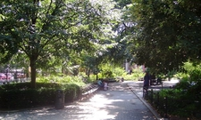 A Walkway In The Park In Summertime
