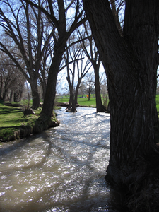 Sugar House Park River