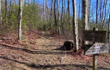 The Sugarland Mountain Trail At Huskey Gap