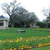 Surrey Gardens