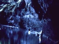 Surtshellir Cave