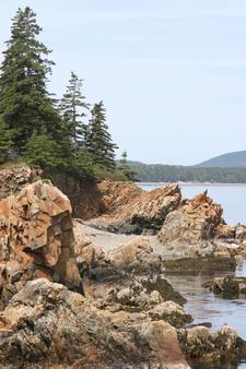 Sutton Island Coast