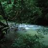 Tabin River Camp Site