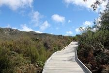 Table Mountain National Park SA Pathway