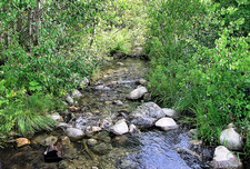 Taggart Lake & Beaver Creek Hike - Grand Tetons - Wyoming - USA