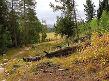 Taggart Lake & Beaver Creek Trail Views - Grand Tetons - Wyoming - USA
