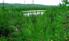 Taggart Lake Hike - Grand Tetons - Wyoming - USA