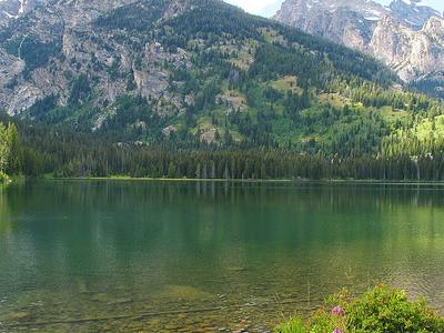 Taggart Lake Views - Grand Tetons - Wyoming - USA