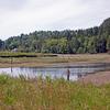 Tahuya River