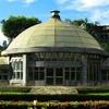 Taipei Botanical Garden Greenhouse