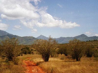 Taita Hills Kenya