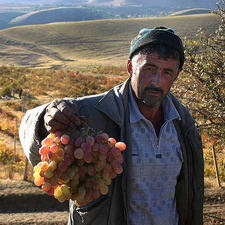 Tajikistani Men With A Bunch Of Grapes