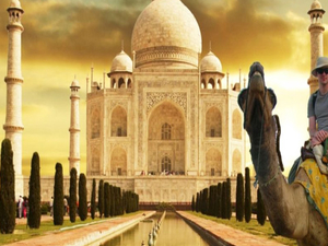 8 Days Taj Mahal, Himalayas & North India Tour Photos