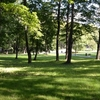 Kalamaja Kalmistu