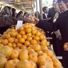 Tamenglong Orange Festival
