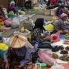 Tamu Kota Belud - Market