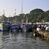 Tangalle Port