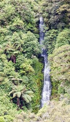 Tauwhare Falls @ Te Urewera NP - North Island NZ