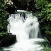 Tawau Hills Park - Waterfall