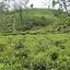 Sylhet Divisão