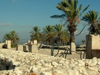 Tel Meguido