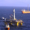 Terra Nova Oil