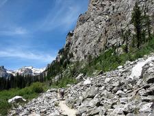 Teton Valley Trail At Grand Tetons - Wyoming - USA