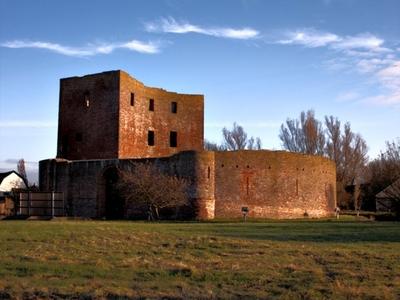 Ruins Of Teylingen