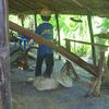 Thai Farmers Lifestyle Museum