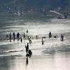 Thailand Nan River Fishing