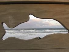 The Beach In Marineland