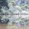 The Catlins @ Kaka Point NZ South Island