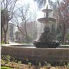 The Gardens Of La Merced - Cordoba