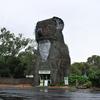 The Giant Koala At Dadswells Bridge