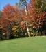 The Golf Course At Bolduc Park