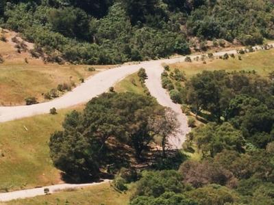 The Hills Of Orinda