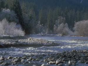 Hoh River